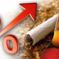 У серпні алкоголь і сигарети в Житомирській області подорожчали майже на 5%