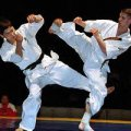 Житомиряни вдало виступили на чемпіонаті України з шотокан карате-до
