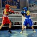 Бердичівлянин Роман Маркарян став чемпіоном України з боксу серед юнаків