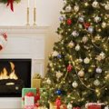 Житомирський губернатор підписав розпорядження про перенос робочих днів під час новорічних свят