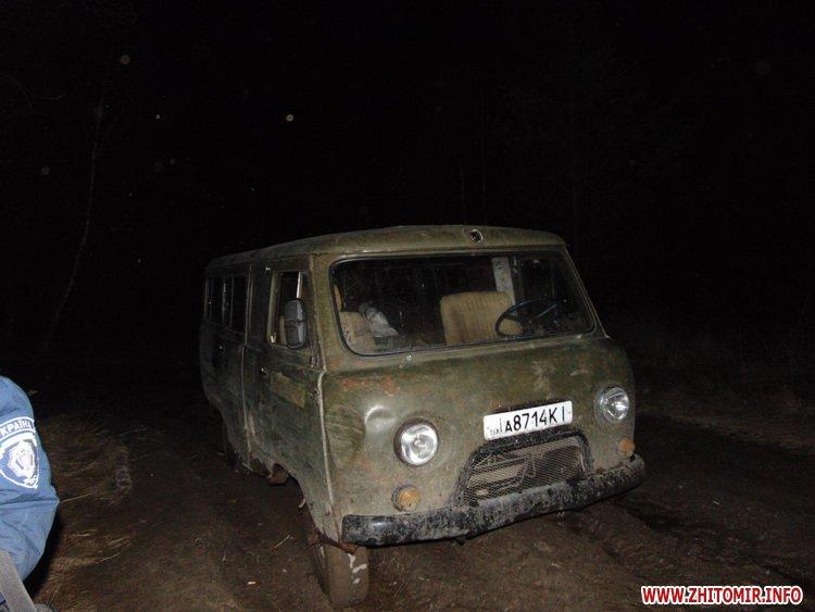 У Житомирській області браконьєри вполювали косулю, яка навесні мала народити