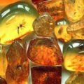 Нардепы от Житомирщины рассказали про законопроект о легализации добычи янтаря