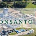 Monsanto інвестувало 250 мільйонів доларів у будівництво заводу з виготовлення насіння кукурудзи на Житомирщині