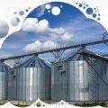 У січні підприємства харчової промисловості Житомирщини наростили обсяги виробництва