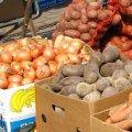 У Житомирі відбудеться сільськогосподарський ярмарок
