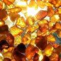 Суд прекратил незаконную добычу янтаря на 167 га земли в Житомирской области