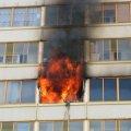 У Житомирі вбивство замаскували вогнем