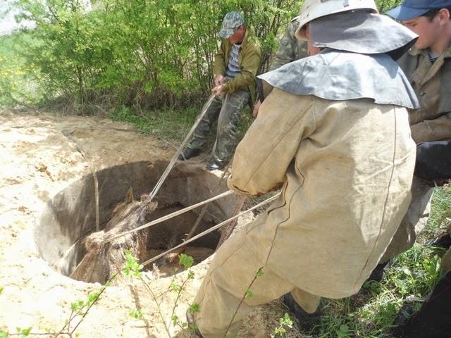 На Житомирщине спасатели достали лошадь из 3-х метрового канализационного колодца. ФОТО