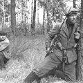 """Велика Війна. Історія четверта: """"партизанен"""" і зрадники"""