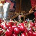 На Житньому ринку у Житомирі з'явилися перші черешні.
