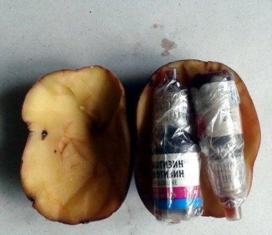 В Житомирской области наркотики находят даже в картошке