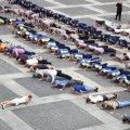Житомиряни хочуть встановити спортивний рекорд з масового віджимання від підлоги