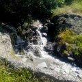 Житомирводоканал сбросил в Каменку неочищенные сточные воды. ФОТО