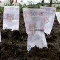 Житомирські підприємці та фірми хочуть викупити вісім орендованих земельних ділянок