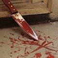 Очередное жестокое убийство на Житомирщине - старший брат зарезал младшего
