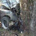 В Олевському районі загинув водій буса, який з'їхав у кювет і врізався в дерево