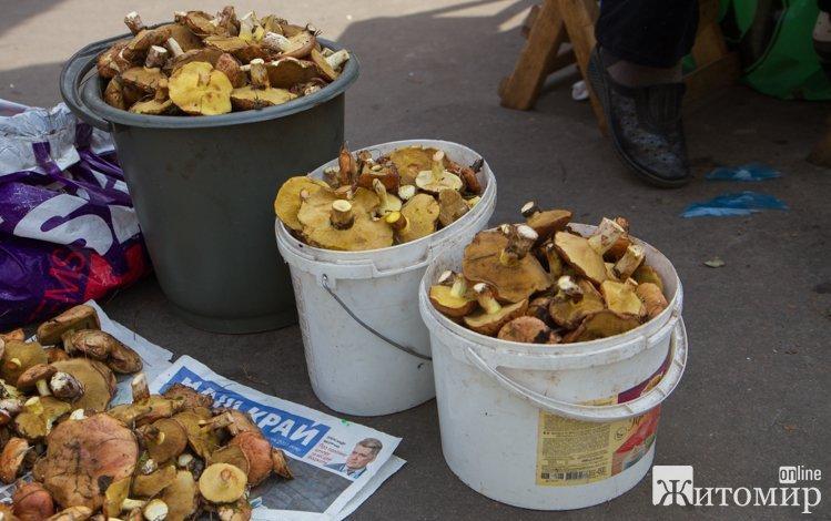 У Житомирі на Житньому ринку вже продають гриби