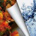 Синоптики розказали, якою буде осінь і зима в Україні