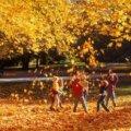 У житомирських школах осінні канікули не подовжуватимуть, - управління освіти