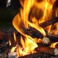 На Житомирщині за добу ліквідували три пожежі в екосистемах