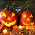 Що таке Halloween і як його святкувати в Житомирі?