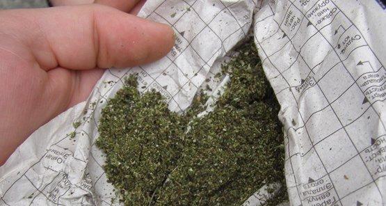 У райцентрі Житомирської області поліцейські затримала чоловіка з марихуаною