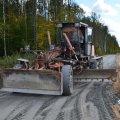 В лесах Житомирской области проложили 55 километров новых дорог