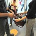 На Житомирщині правоохоронці затримали жінку за крадіжку гаджета