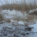 Под Киевом у реки найдено тело задушенного заробитчанина с Житомирщины