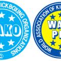 В Житомир на чемпіонат області з кікбоксингу WAKO приїдуть спортсмени з Донеччини