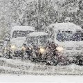 Жителів Житомирщини попереджають про сильні снігопади та буревії