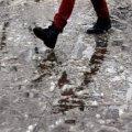 Погода в Житомире и Житомирской области на выходные, 30 и 31 января