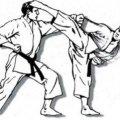 В Житомирі стартував всеукраїнський Чемпіонат з кіокушинкай карате
