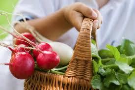 Как выбрать ранние овощи, чтобы они не навредили здоровью
