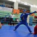 Юні житомирські спортсмени вибороли 8 медалей на чемпіонаті України з універсального бою