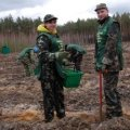 На Житомирщині розпочали весняне садіння лісу