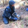 В Брусилівському районі грибники знайшли мінометну міну