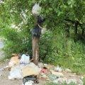 Житомирян штрафуватимуть за викинуте на вулицях сміття