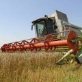 В Житомирській області розпочато збирання врожаю ранніх зернових і зернобобових культур