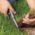 У Любарі ПТУ незаконно передало майже 100 га землі в обробіток ТОВ