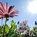 Прогноз погоди у Житомирі на завтра, 19 серпня