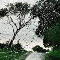 Житомирян попереджають про грози, пориви вітру та шквали