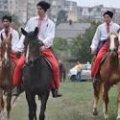 У Житомирі вдруге відбудеться фестиваль «Свято українського коня»