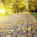 В последний день сентября в Украине солнечно и тепло до +25