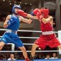 У Житомирі проходитиме триденний турнір з боксу