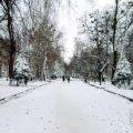 Погода в Житомирі на вихідні
