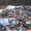Львівське сміття продовжують скидати на території області, цього разу – неподалік Житомирського району