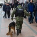 У Житомирській області слідчі з ГУНП, райвідділ та кінолог з собакою шукали дівчину, яка вигадала своє викрадення