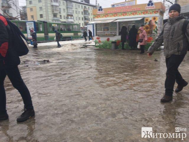 Житомир - місто-каток! ФОТО