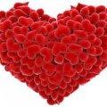 У Житомирі до Дня закоханих хочуть організувати аукціон, а у Новограді-Волинському – масштабний флешмоб